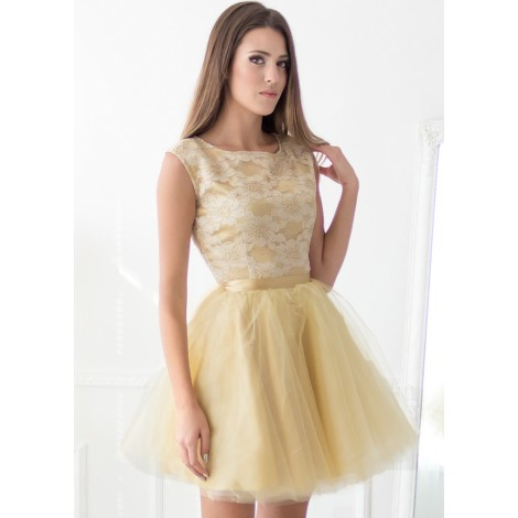 Sherri Mini Dress (Gold)
